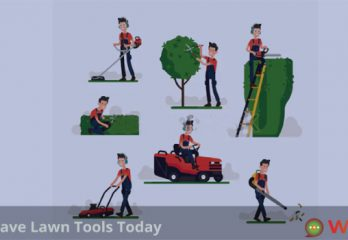 Must Have Lawn Tools